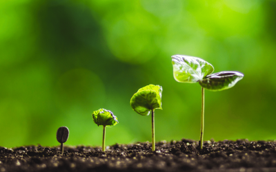 How to Prepare your Business for Growth (Through and Beyond COVID)
